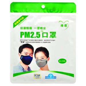 绿盾PM2.5口罩成人均码
